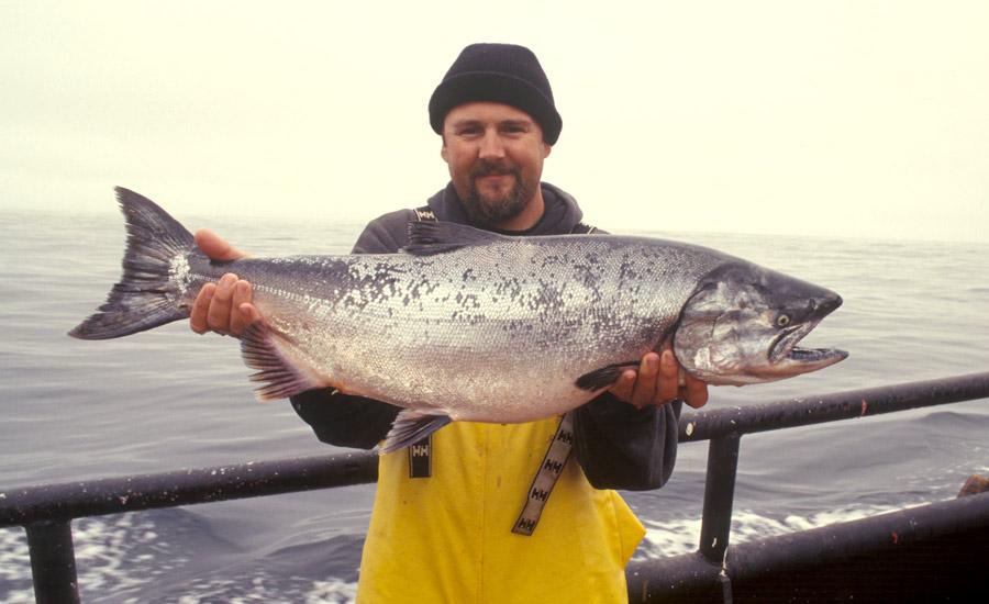 peche saumon